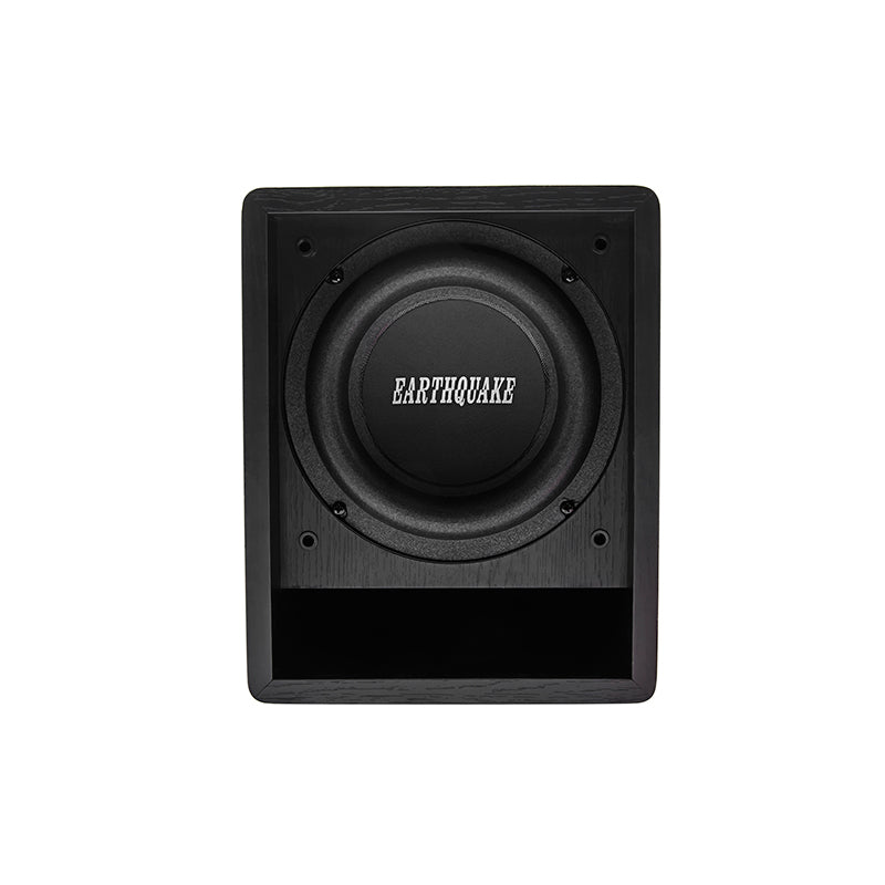 Earthquake FF6.5 subwoofer front driver