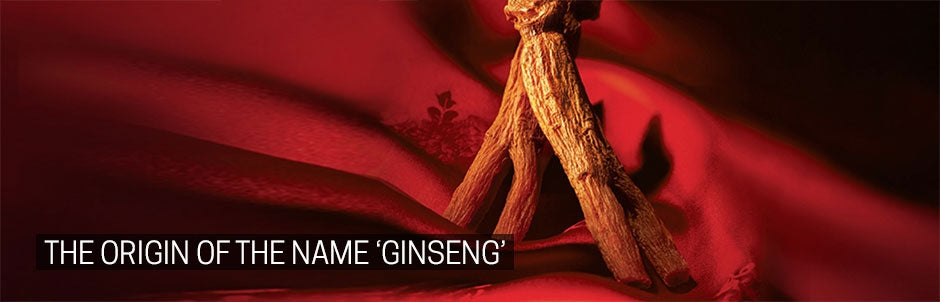The Origin of The Name Ginseng