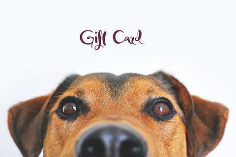 Hand and Paw Project™ Gift Card