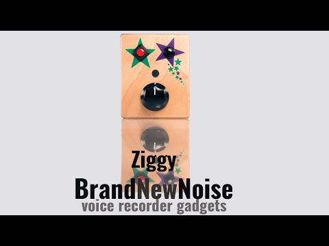 Ziggy by BrandNewNoise Instruments and Audio Recorders. This simple audio device has a record button, play button, and knob to control the speed of your recording