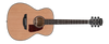 Orangewood Oliver Cedar Solid Top Acoustic Guitar - Top w/ Pickguard