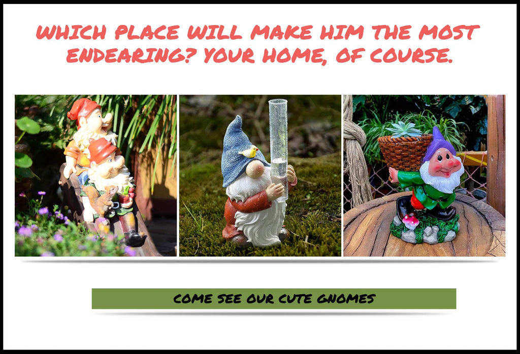 Cute Gnomes Banner For Snow White And Dwarfs