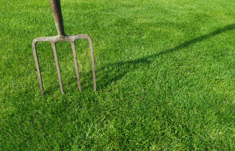 Why do I need to aerate my lawn?
