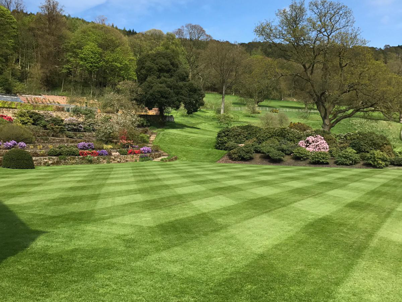 The benefits of fertilising your lawn