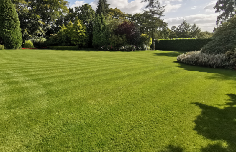Mowing tips for an established garden lawn