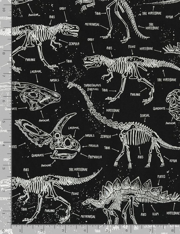 Glow in the Dark Dinosaur Skeletons-Timeless Treasures-Fat Quarter
