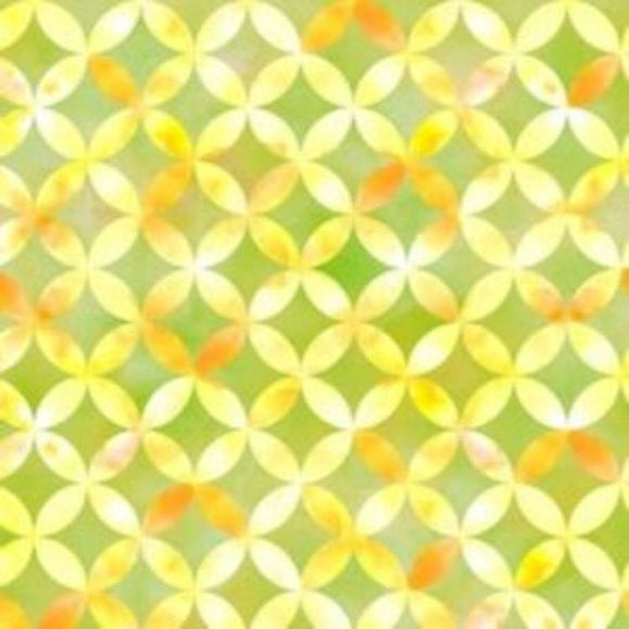 Sunkissed-Quilting Treasures-BTY