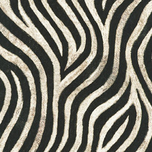 "Animal Kingdom ""Wild Zebra Stripes""-Robert Kaufman-BTY"