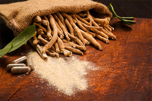 Ashwagandha for hangxiety relief