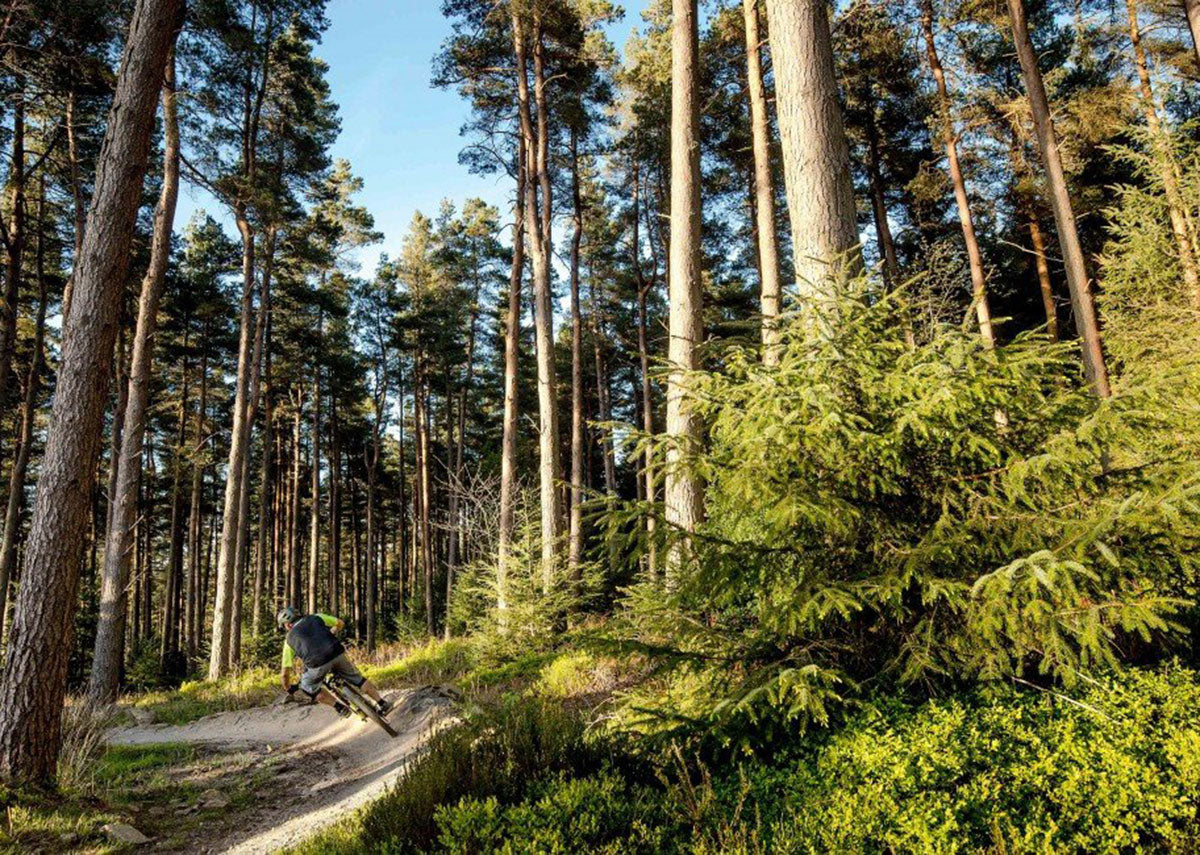 booicore Guide to Mountain Biking