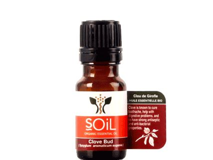 SOIL Organic Clove Bud Oil, 10ml