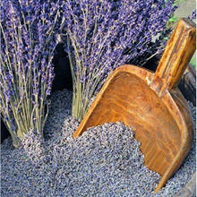 Load image into Gallery viewer, Lavender Scoop