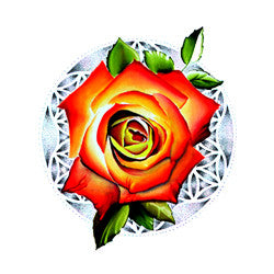 Rose of Life