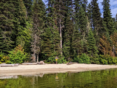 Murtle Lake Stand Up Paddle Board