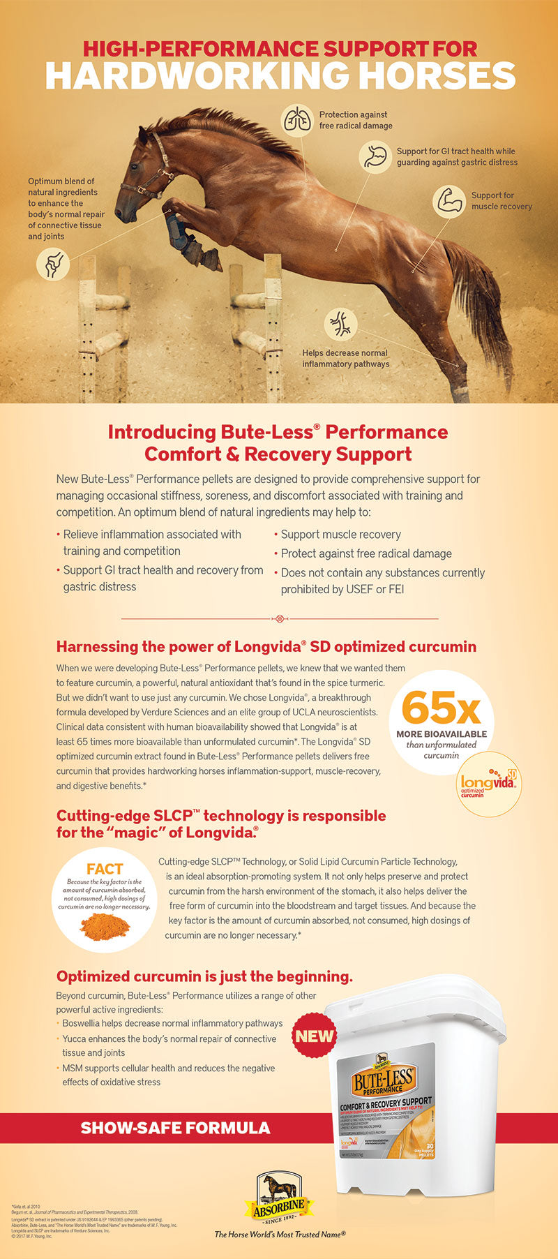 Bute-Less Performance Optimized Curcumin Pelleted Supplement High-Performance Support for Hardworking Horses