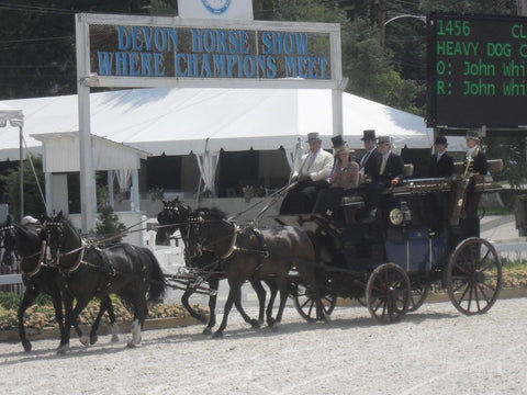 The Tucker S Johnson four-in-hand carriage at Devon. Melissa is seated back left.
