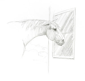 Horse looking into a window