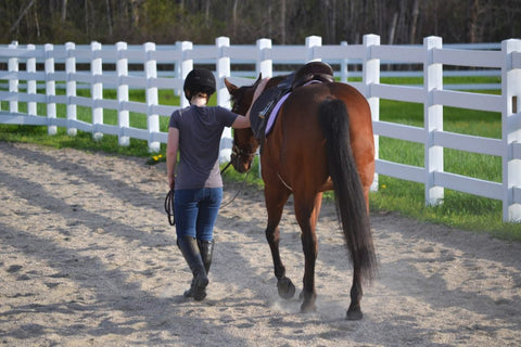 Woman and horse walking separately before using Bute-Less Performance Supplement