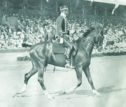 Absorbine Cheers 100 Years of Olympic Equestrian Events