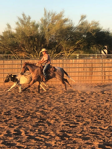 Brad Barkemeyer Team Absorbine Rider with cow and horse