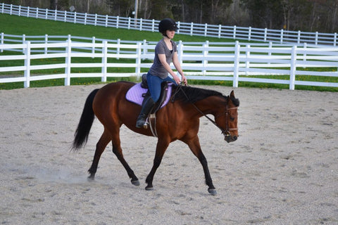 Woman and horse riding in a corral