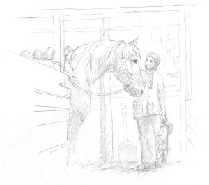 horse and chickens sketch