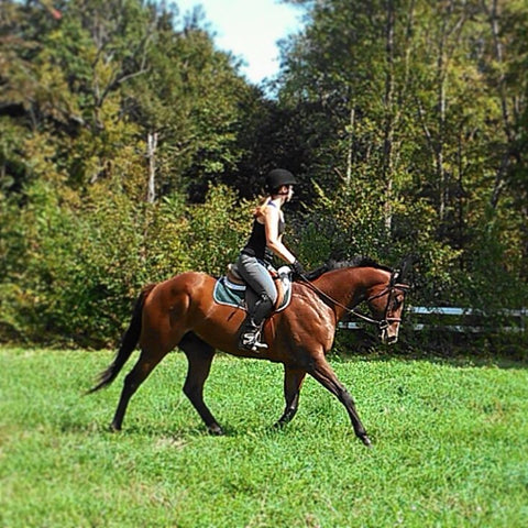 Eventing horse with female rider in field