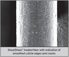 Image of ShowSheen treated hair showing smoothing of cracks