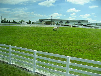Kentucky Horse Park Explored with Absorbine