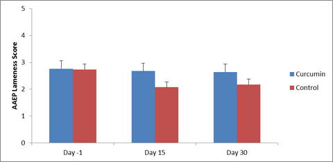 Effect of an Oral Supplement Containing Curcumin Extract (Longvida™) on Lameness due to Osteoarthritis or Degenerative Disease and Gastric Ulcer Scores