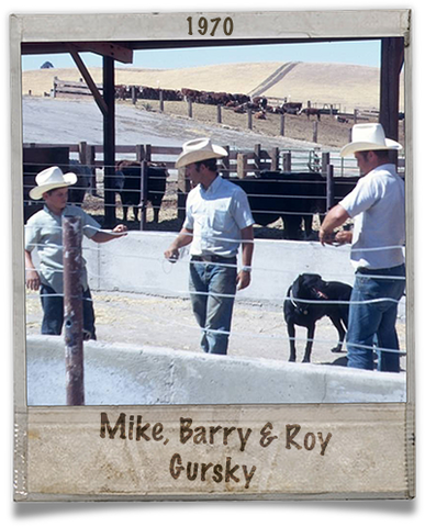 Mike, Barry, and Roy Gursky