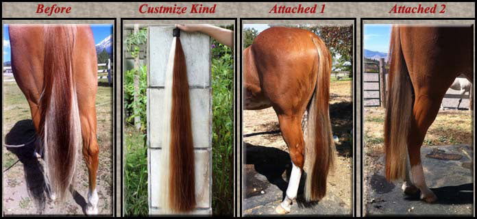 Horse Hair Custom for share