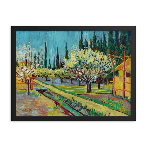 Gerahmter Kunstdruck 'Orchard Bordered by Cypresses' Vincent van Gogh