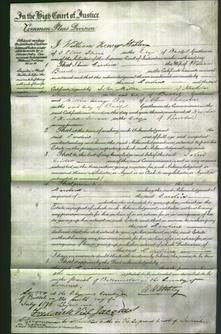 Court of Common Pleas - Caroline Brunt-Original Ancestry