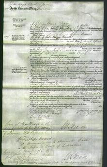 Court of Common Pleas - Mary Sarah Sissons Perry Banks-Original Ancestry
