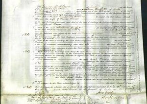 Court of Common Pleas - Sarah Brown-Original Ancestry