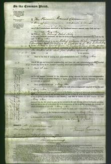 Court of Common Pleas - Mary Ann Kirby-Original Ancestry