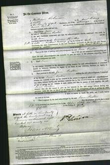 Court of Common Pleas - Jane Preston-Original Ancestry