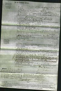 Court of Common Pleas - Mary Blakelock-Original Ancestry