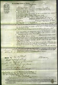 Court of Common Pleas - Alice Maria Leary-Original Ancestry