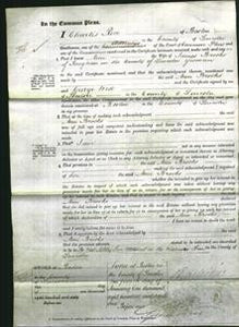 Court of Common Pleas - Ann Brooks-Original Ancestry