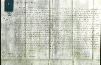 Court of Common Pleas - Sarah Chinn-Original Ancestry