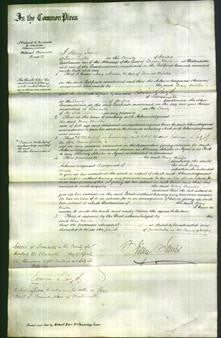 Court of Common Pleas - Mary Minton-Original Ancestry