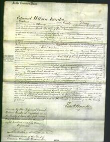 Court of Common Pleas - Sarah Banham-Original Ancestry