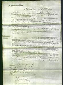 Court of Common Pleas - Frances Smith-Original Ancestry