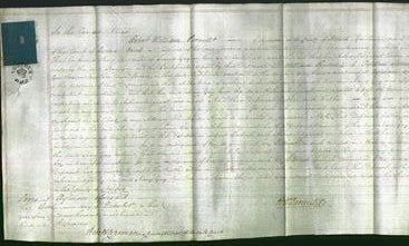 Court of Common Pleas - Mary Gay-Original Ancestry