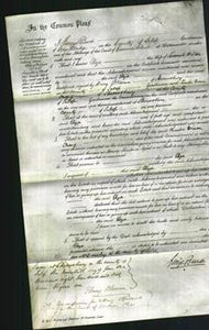Court of Common Pleas - Eliza Wilson-Original Ancestry