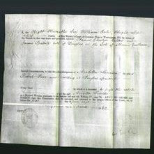 Appointment of Special Commisioners - Thomas Cheslyn Callow and James Spittall-Original Ancestry