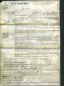 Court of Common Pleas - Arabella Lucinda Parr-Original Ancestry