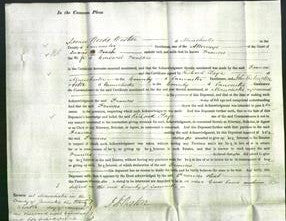 Court of Common Pleas - Frances Foulkes-Original Ancestry